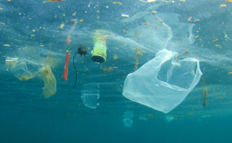 Rufisque:  : l'interdiction des sachets plastiques, une réalité ?